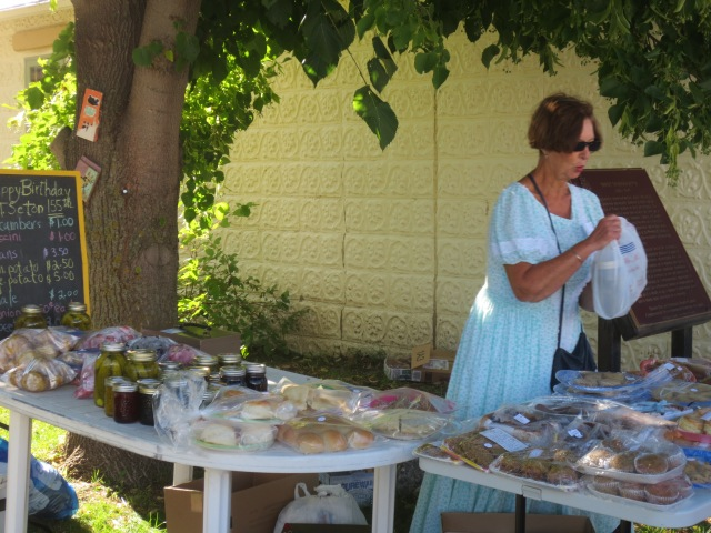 CARBERRY HERITAGE FESTIVAL 2015 PICS 024